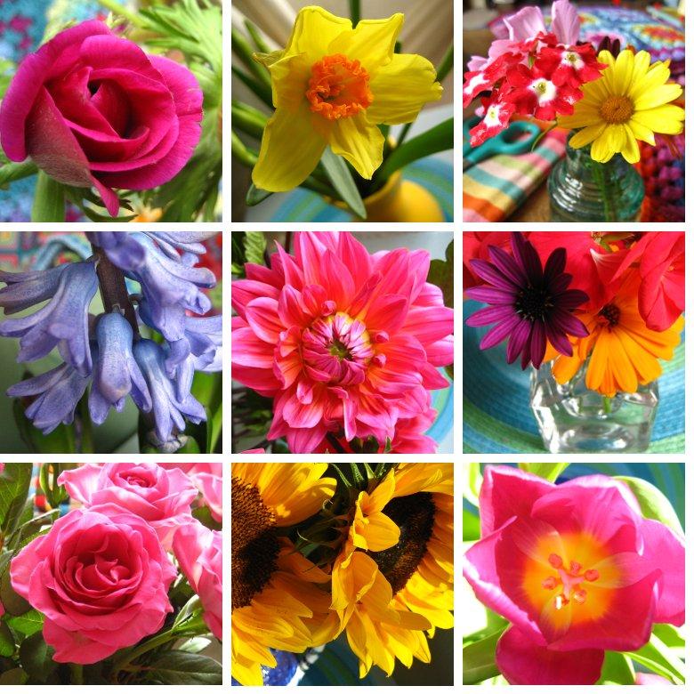 Flowers2009