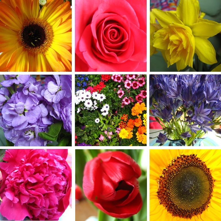 Flowers2010