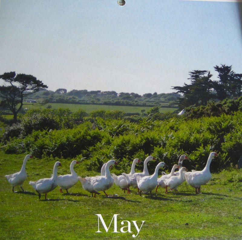 05_may2