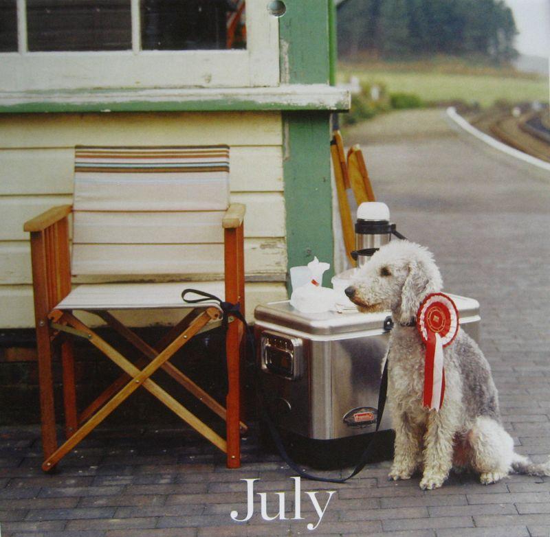 07_jul2